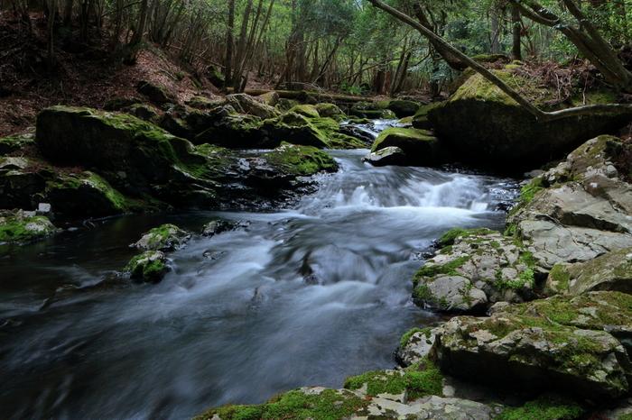 """京都府の南丹市に日本の""""音風景100選""""に選ばれた「るり渓の滝」という場所があります。府立の自然公園の中にあって、JR園部駅からバスが通っています。滝だけでなく葉が豊かに生い茂っている木々と一緒にゆっくりと自然を感じて散策が出来ます。"""