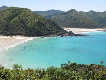 自然が豊かな五島列島。福江島へは、長崎港からジェットフォイルとフェリーが出ているほか、長崎空港から飛行機で行くこともできます。こちらは、美しい遠浅の砂浜とコバルトブルーの海が印象的な、高浜海水浴場。沖縄まで行かなくても、こんなに美しい海に出会えるんです。