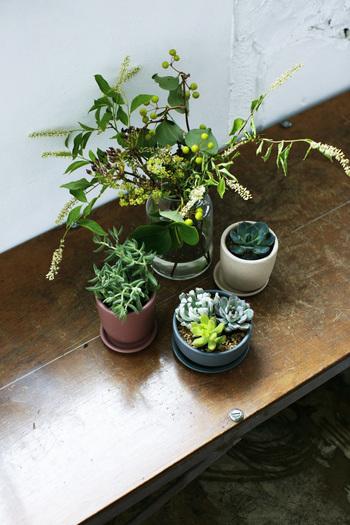 お手持ちの観葉植物や、インテリアグリーンと一緒に。高低差を出すことで、お部屋にリズムが生まれます。さまざまな組み合わせを楽しんで。