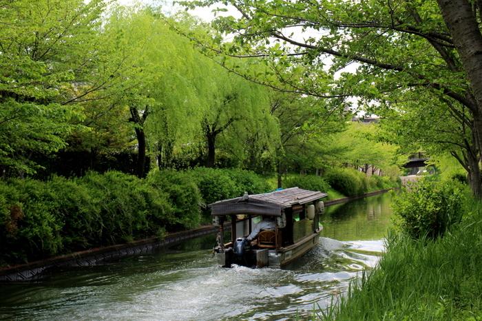 江戸時代、伏見と大坂を往来していた十石舟、三十石船は、旅客や米や酒などの貨物を輸送する海上交通手段として重要な役割を果たしていました。