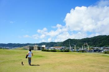 海を見ながら楽しめる、広い芝生公園がある道の駅です。道の駅に併設されているといえど約2000坪あり、潮風を感じながら、飼い主さんもわんちゃんと一緒にのびのび走り回ることができます。
