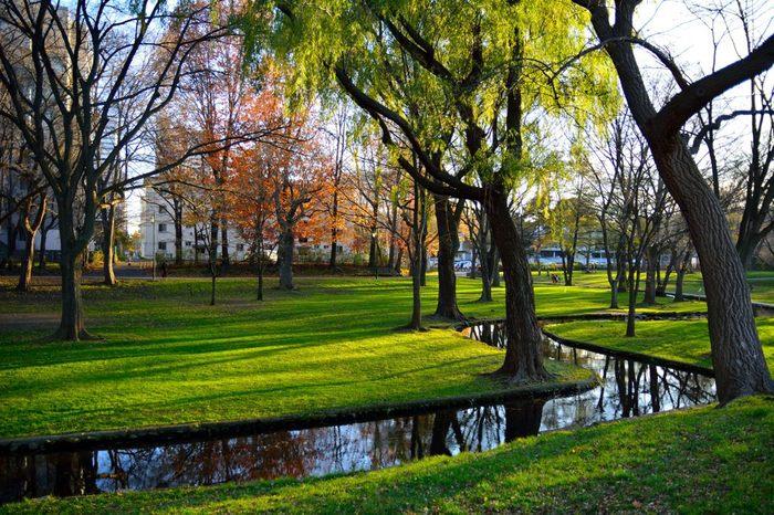 札幌駅北口からほんの少し歩けば、緑豊かな北海道大学キャンパスが。広い構内には小川が流れ、市民が散策ジョギングや散策を楽しむスポットとしても人気です。また、「古河講堂」をはじめ、北海道開拓と教育の発展にまつわる歴史的な建物も多く点在しています。