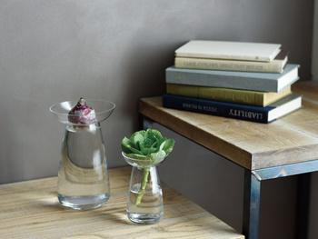 ステンレスフィルターを使ったスタイリッシュなコーヒーウェアが有名な、キッチンメーカーKINTO(キントー)から、お洒落でインテリアにも最適な水栽培用の専用花器が発売されています。