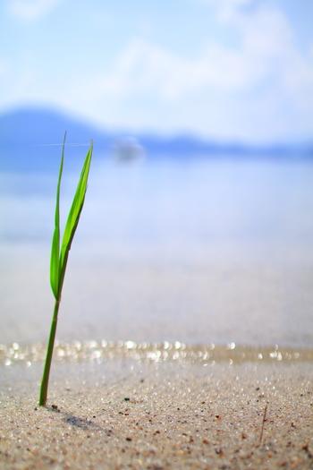 水のある風景、それは心のモヤモヤや、沈んだ気持ちを浄化してくれて、新たな潤いを与えてくれたりします。