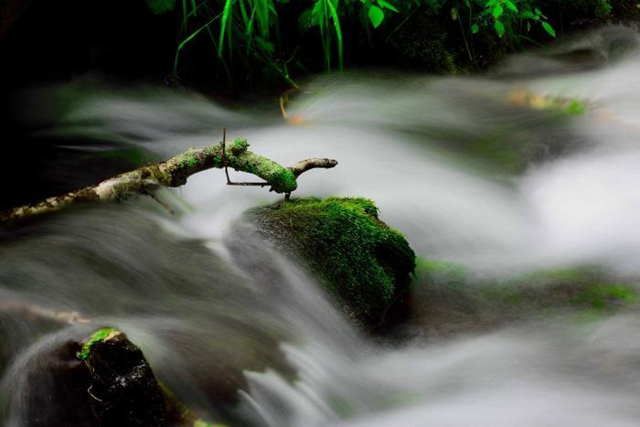 水の流れも美しくて涼しげです。マイナスイオンいっぱい。心が洗われるよう…。