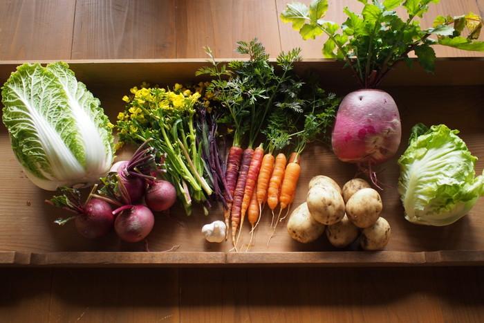 色鮮やかで、綺麗な野菜の数々。 左から、白菜・赤かぶ・なばな(オータムポエム・紅菜苔)・にんにく・ベビーニンジン・新じゃが・赤大根(紅くるり)・レタス。手間ひまかけて育てた野菜たちは、食べるのがもったいなくなりそうな位の美しさです。