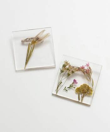 植物が閉じ込められた標本のようなブローチ。シンプルなリネンのワンピースの胸元に付けたら素敵ですね。