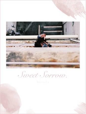 まずは日常の様々なエッセンスを織り交ぜたポップミュージックを展開するシンガーソングライター、harinekoの『Sweet Sorrow.』。エディトリアルデザイナーの宮崎希沙が全デザインを担当したPHOTO ZINEがセットになっています。