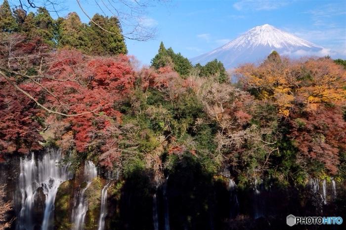 滝を囲む木々の向こうには富士山も臨めます。富士に降った雨雪は30年もの間ゆっくりと地中を旅してきて、ようやくここでまた、滝となって光を浴びることになるという自然の神秘。