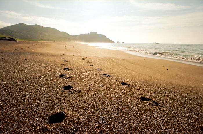 恋路ヶ浜は、日出の石門まで約1キロ。太平洋の荒波をうけて湾曲する、白く美しい砂浜です。恋人たちの聖地にもなっています。