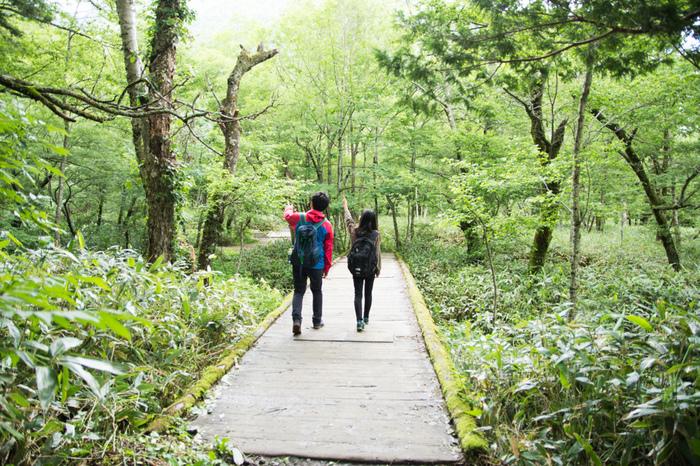 「かみこうち」は神の降り立つ地を意味する「神降地」とも称されており、日本屈指の景勝地として、年間150万人もの人々が訪れています。そんな人気スポット上高地の魅力をまとめてみました。