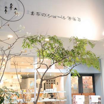 高松市丸亀町、ことでん片原町駅より徒歩6分のところにある「まちのシューレ963」。ここに季節の食材を使ったランチや自家製ケーキなどをいただけるおしゃれなカフェがあります。
