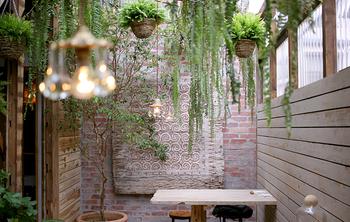 こちらは、三軒茶屋にあるソルソが手がけるエスニックタイ料理屋さん「キミドリ」。 三軒茶屋の駅から商店街をのんびり歩くこと数分、軒下にブドウの葉が生い茂るおしゃれなカフェがあります。 店内の吹き抜けの天井からは、たくさんのシダ植物がぶらさがり異国に旅行に来ているかのような空間。
