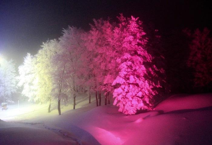 夜になると、樹氷林がライトアップされます。漆黒の夜闇が広がる中、光を浴びて樹氷が浮かび上がる様は幻想的で、寒さを忘れていつまでも眺め続けていたくなるほどの美しさです。