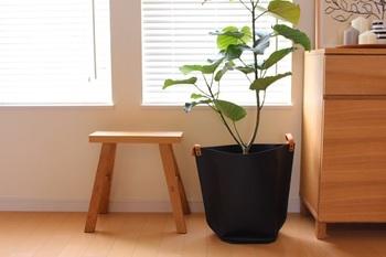 ミニマリストが好むものは何通りにも使えるもの。写真のようなベンチは座る、飾る、踏み台にする・・・と、いろいろな用途に使えるのでどんなライフスタイルの変化にも対応できて長く使うことができます。