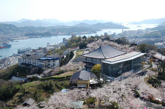 千光寺公園は、山頂から中腹にかかる公園です。展望台からは、尾道の市街や尾道水道だけでなく、対岸の向島、さらに天気が良ければ遠く四国まで望むことができます。画像は、桜の季節の千光寺公園展望台からの眺め。千光寺公園は、尾道随一の桜の名所です。