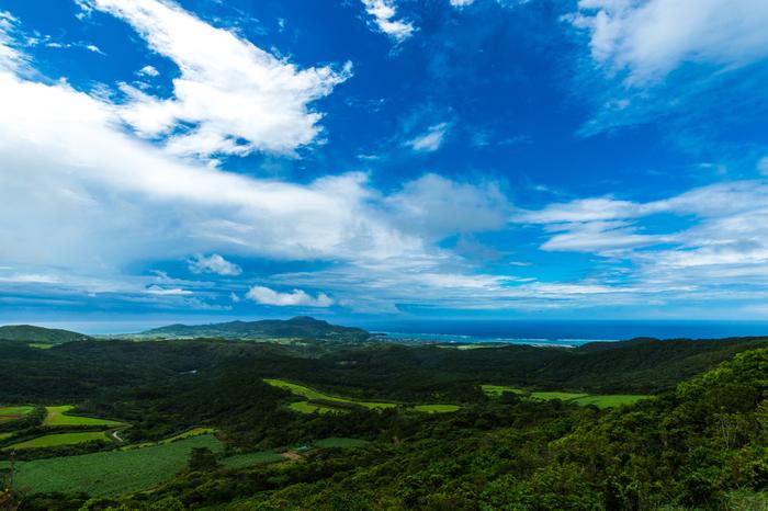 標高310メートルのグスク(城跡)からは、久米島全体を一望することができます。抜けるような青空、深緑の南国植物、透き通る碧い海、その向こうに見える水平線が織りなし、絵葉書のような景色が広がっています。