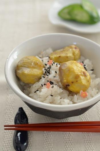 秋!といえば何といっても「栗ごはん」!!栗は秋ならではの旬の食材なので、ぜひごはんにも取り入れたいですね♪栗ご飯にも様々ありますが、お米ともち米を半々で炊く「おこわ風栗ご飯」はモチモチで冷めても美味しくておススメ。お弁当やおにぎりにも◎です!
