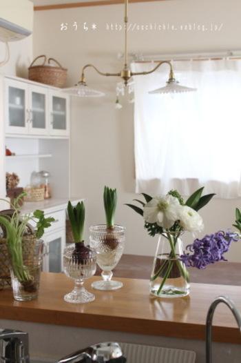 見ているだけで明るい気持ちになれるお花も、キッチンには欠かせない存在かもしれません。起床してから朝一番にお水をかえてあげれば、自分の気持ちもシャキっとなるはず。
