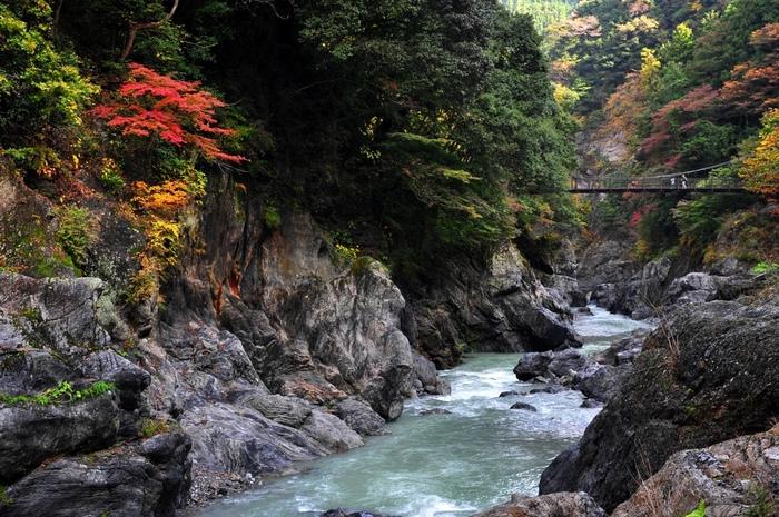 鳩ノ巣渓谷から白丸ダムへ続く道はよく整備されており、ハイキングコースとしても人気があります。多摩川のせせらぎを聴きながら、山と渓谷が魅せる景色を楽しみながら東京都に残る自然の豊かさを肌で感じてみるのもおすすめです。