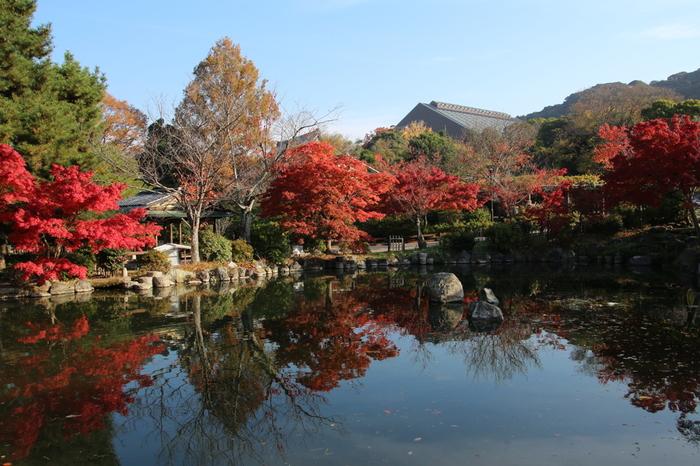 京都市最古の公園で広い回廊式日本庭園を持つ円山公園は、1886年に開園されました。開園以来、地元京都の人々や観光客に愛され続け、東山と織りなす素晴らしい景観美を求めていつも大勢の人々で賑わっています。