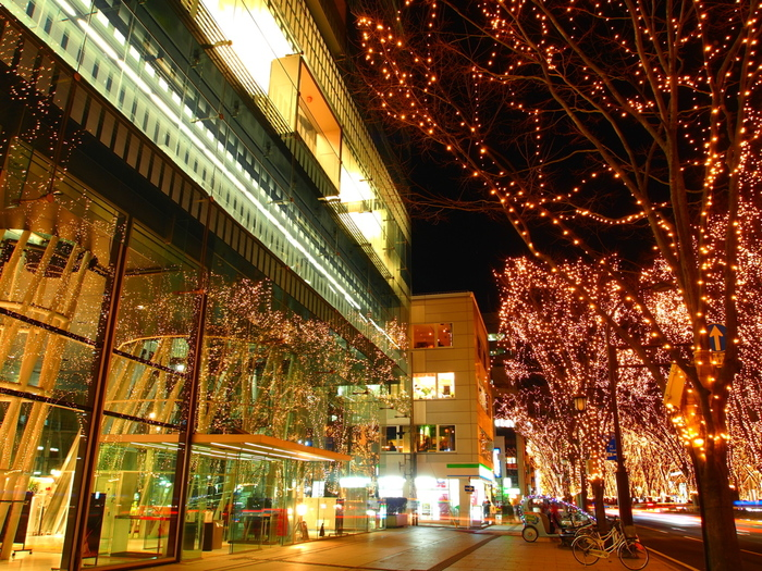 中からもケヤキ並木の定禅寺通を見渡すことができ、中と外との一体感を感じられるデザインとなっています。近代的な技術とデザインが融合した空間で読書するのもいいですね。