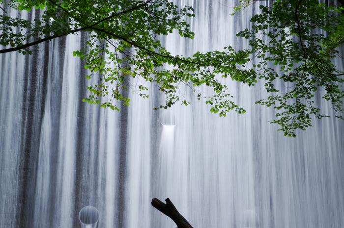 西丹沢県民の森では、マイナスイオンを浴びることもできます。森の中にある美しい滝は、訪れる人にたっぷりのマイナスイオンを浴びせてくれます。樹々の緑、岩肌、滝が散らす白いしぶきは人々を魅了してやみません。