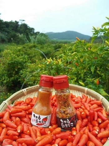 南国沖縄、と言えば有名なのが「島唐辛子」ですね。辛味が強くて独特な味わいがあり、沖縄料理にはかかせない調味料です。久米島るしぇでは露地栽培の島唐辛子を使い、丁寧に加工した香辛料もたくさん取り扱っています。