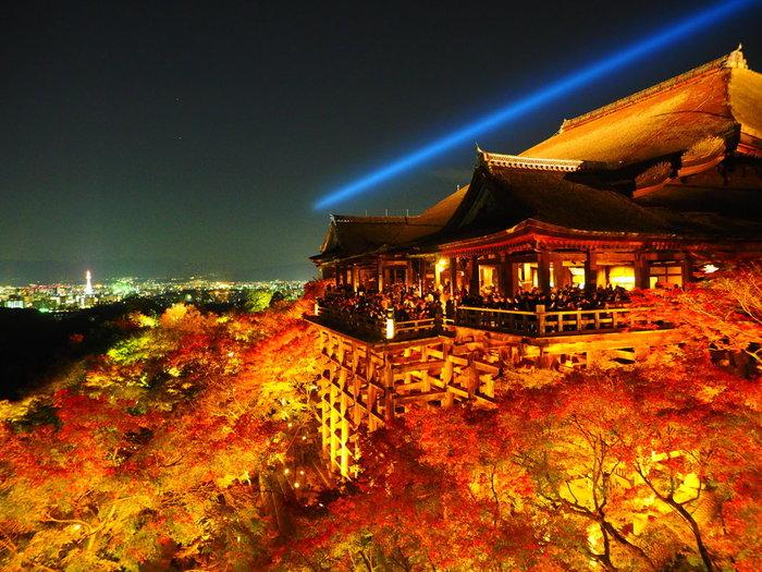 いつも大勢の参拝者で賑わう清水寺は紅葉シーズンになると夜間特別拝観が行われます。有名な清水の舞台から眺める京都市内の夜景と紅葉も素晴らしいですが、「奥之院」からの眺望は格別です。清水の舞台は、深紅に染まったもみじ約1000本に囲まれており、まるで燃え盛る炎に包まれているかのような迫力です。
