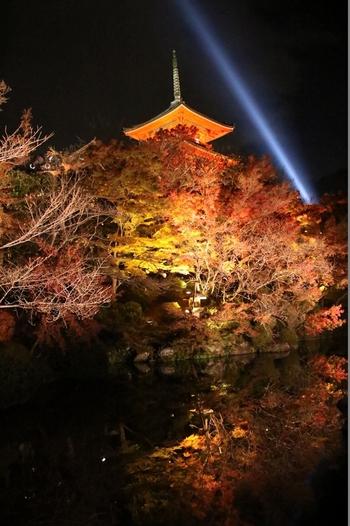 清水寺境内にある三重塔も美しくライトアップされます。夜空に向かってまっすぐに延びる一筋の蒼い光は、観音様の慈悲の心を表現したものです。
