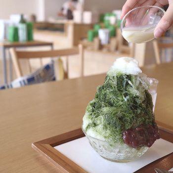 ふわふわの氷がたっぷりの抹茶ミルクのかき氷。毎年、すすむ屋茶店のかき氷を楽しみにされている人も多いんです。