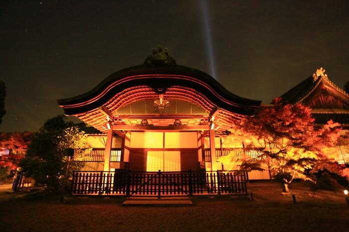 光そのものである御本尊の熾盛光如来を祀る青蓮院門跡では、光の美しさを表現する独特のライトアップが行われます。