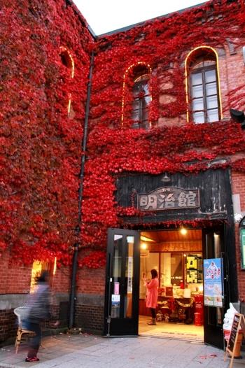 ベイエリアの歴史的建物の中には、ツタをからませたものが複数あります。秋になると赤く染まり、レンガと調和して美しい眺めを見せてくれます。