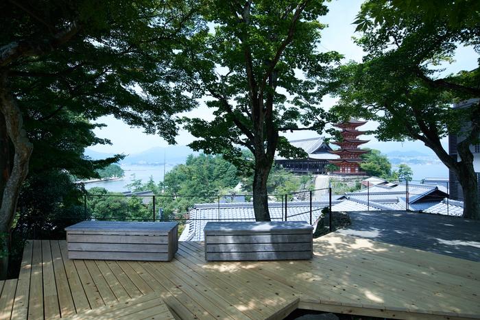 4店舗目の「天心閣」からは、重要文化財である五重塔を眺めることができます。元々は「天心閣」というお屋敷だったそう。店舗用に改装後、お屋敷の名前をそのまま残しました。春夏秋冬と、美しい景色を楽しみながらコーヒーを飲むことができる人気の席です