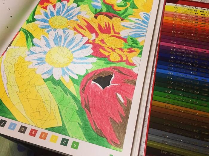 大人の塗り絵は、緻密なデザインを自分の好きなように塗っていきます。それに対してパズル塗り絵は、図柄に番号が振ってあり、その指示通りに色を塗っていきます。