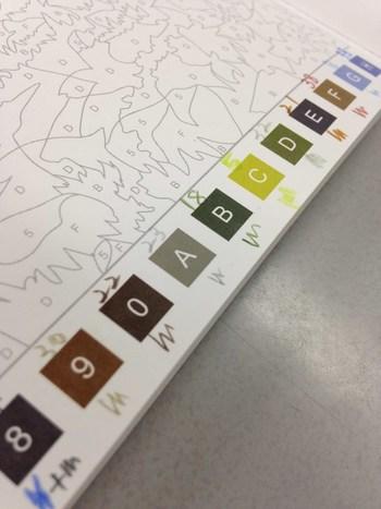 ②たくさんの色を使うので、まずは選んだ色がどれか分かるように各ピースの上に、色えんぴつの番号を書いていきます。 地道だけど大切な作業。人によっては、色見本を別に作る方もいますよ。