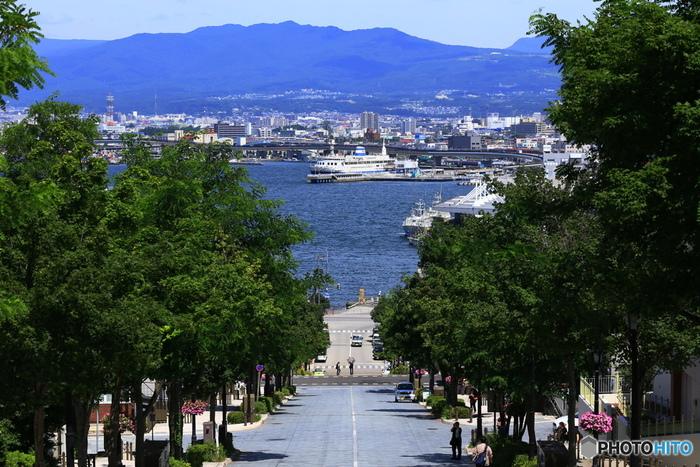 八幡坂から海を見下ろすと、一隻の大きな船が見えます。これが、函館市青函連絡船記念館「摩周丸」。1988(昭和63)年3月13日の青函連絡船最後の日まで運航していた本物の船です。現在は実際の乗り場であった旧函館第二岸壁に係留され、内部を見学することができます。乗り場は函館駅の近くにあります。