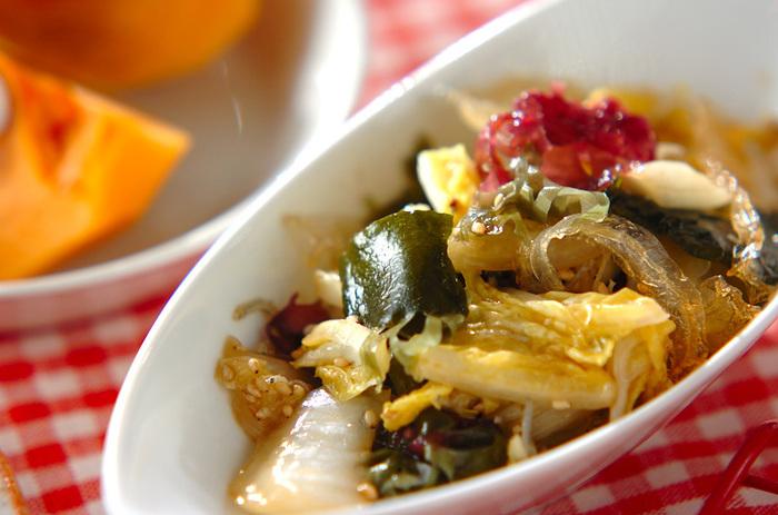 シャキシャキとした白菜の食感と、春雨の食感がたまらないレシピ。これから白菜が美味しくなる季節に最適。ゴマの風味がアクセントで、モリモリ野菜が食べられるレシピです。【97kcal】