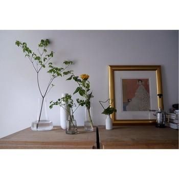 今回は、ナチュラル&シンプルな空間に適した植物と共に、吊るしたり、テラリウムにしたり・・素敵なインテリアグリーンの飾り方のヒントをご紹介します。