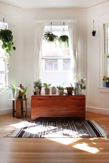 """一人暮らし、実家暮らしの方、ファミリーでお住まいの方と生活形態は皆それぞれですが、""""心地よい暮らし""""をされている方が必ずといってよいほど楽しんでいるのが植物(グリーン)のある暮らし。"""