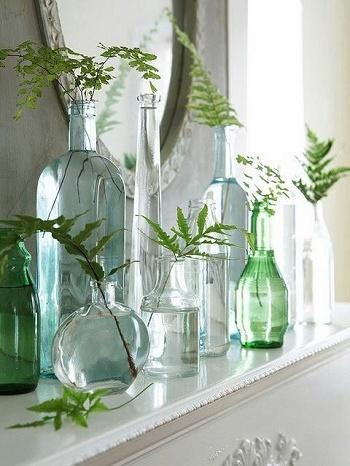 これからインテリアも秋冬仕様に変わる時期。飾って癒されるグリーンをぜひお部屋の模様替えのついでに取り入れてみて下さいね。
