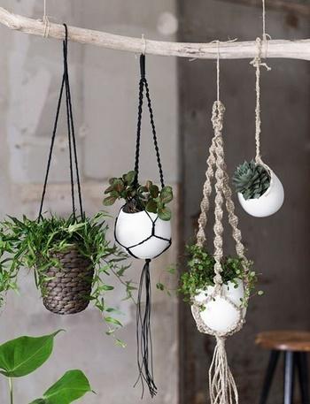 フックやカーテンレールに吊るしたり、流木や突っ張り棒に飾ってみたり・・色々なアイデアで楽しめます。