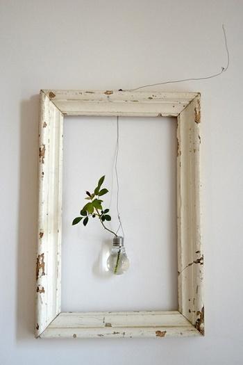 電球に挿したグリーンをフレームと組み合わせてアート風に。フレームの素材や大きさを変えていろいろ楽しめですね!