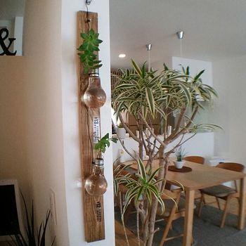 電球の一輪挿しも木目板と合わせるとにナチュラルであたたかな雰囲気に。ワイヤーでラフに吊るしてセンス宿る飾り方です。