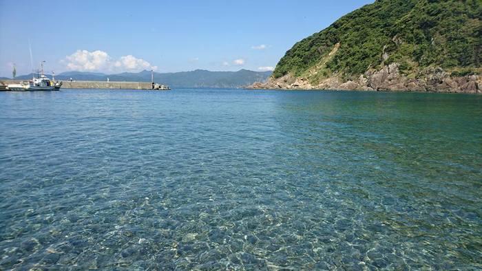 ご覧下さい!この透明度。まず、海の美しさに心を奪われます。いつまでもこの美しい海を守りたい・・・そんな気持ちに気付かせてくれるような場所です。