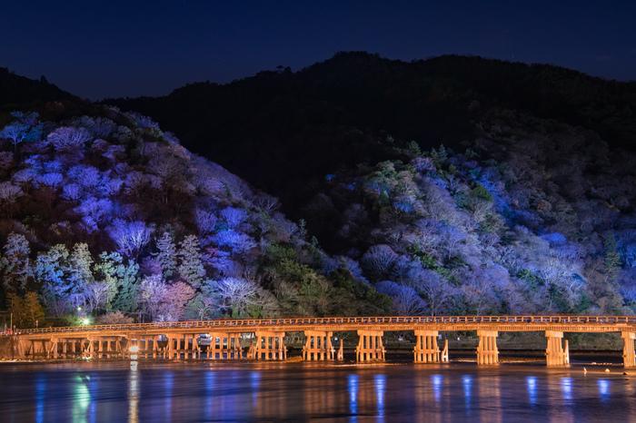 嵐山エリアを代表する景勝地、渡月橋もこの時期は壮麗な姿を見せてくれます。嵐山中心部を悠然と流れる桂川が、ライトを浴びて輝く嵐山と渡月橋を鏡のように映し出し、眼前には一幅の掛け軸のような景色が広がっています。