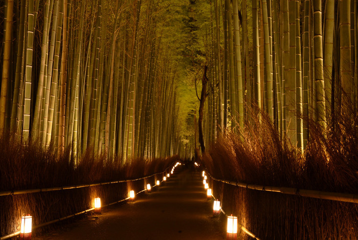 嵐山エリアでも屈指の人気を誇る天龍寺から大河内山荘へと続く竹林の小径。ライトを浴びて明るく輝く青竹と、小径の両脇に灯された路地行灯が融和し、幽玄とした雰囲気が漂います。