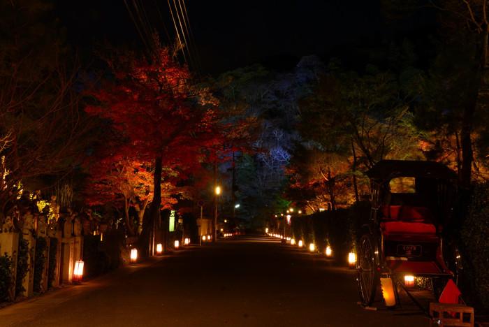 渡月橋から桂川沿いに路地行灯が燈された路地を西側に歩いてゆくと宝厳院にたどり着きます。