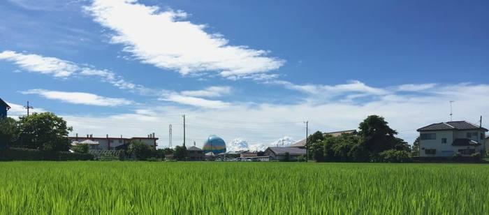 埼玉県のはじっこ、埼玉県東部に位置する幸手(さって)市。