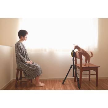 真剣な撮影風景。 写真家ワンちゃんは古田晃広さんのinstagramに度々登場しています。